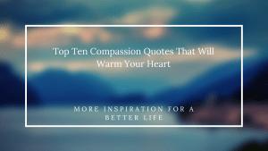 Top Ten Compassion Quotes