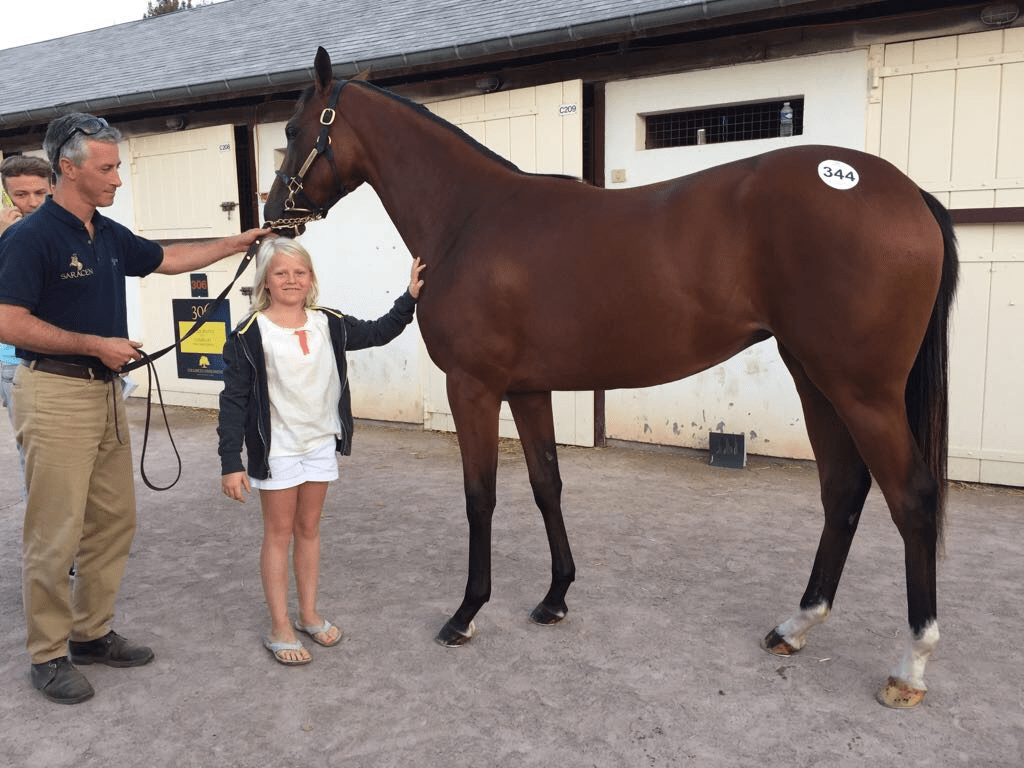 Beautiful thoroughbred with little happy girl in Deauville